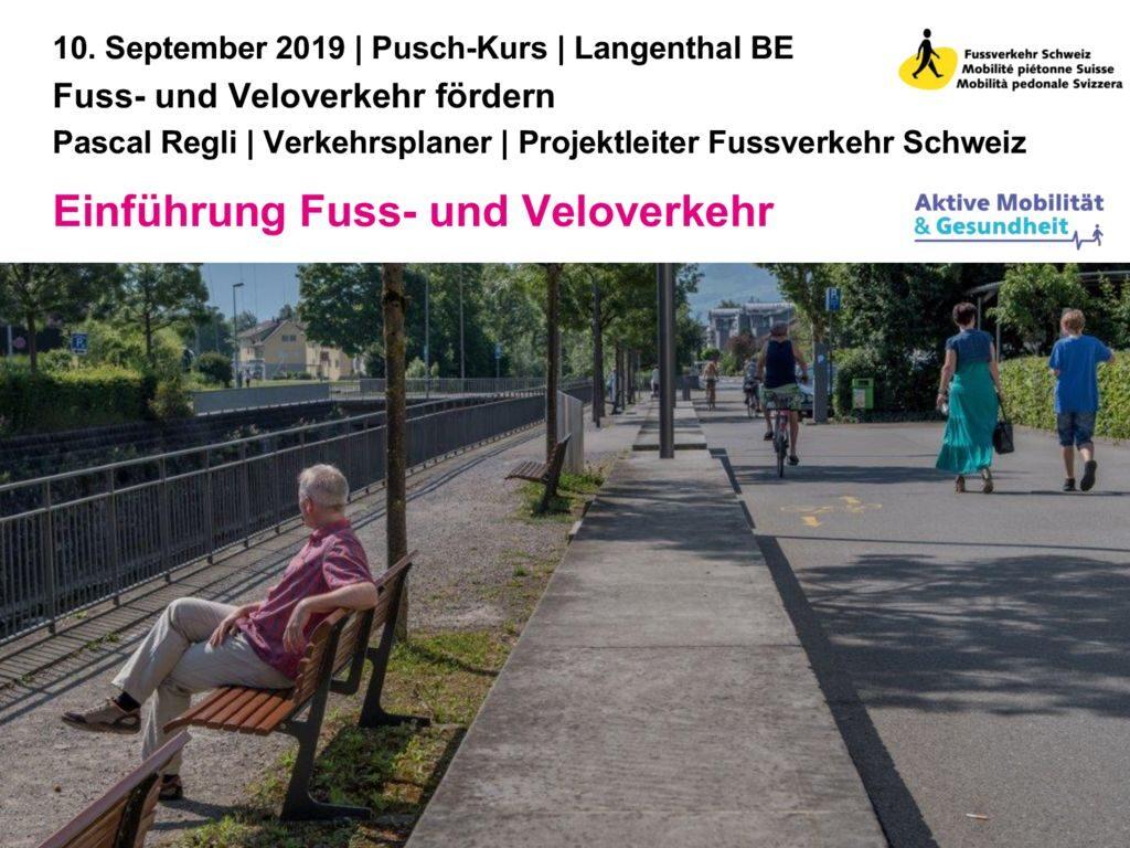 thumbnail of 20190903_Pusch_FVVV_Einleitung_a